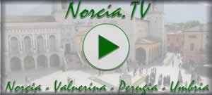 Norcia TV